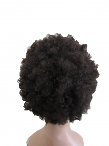 Human Hair Afro Wig